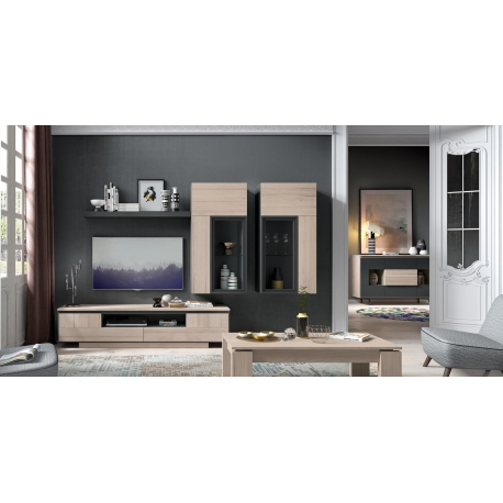 Salon moderno f 532 composicion 135 trend for Composicion salon moderno
